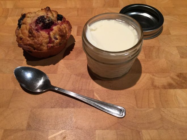 Morning tea - my homemade yoghurt and berry muffin.