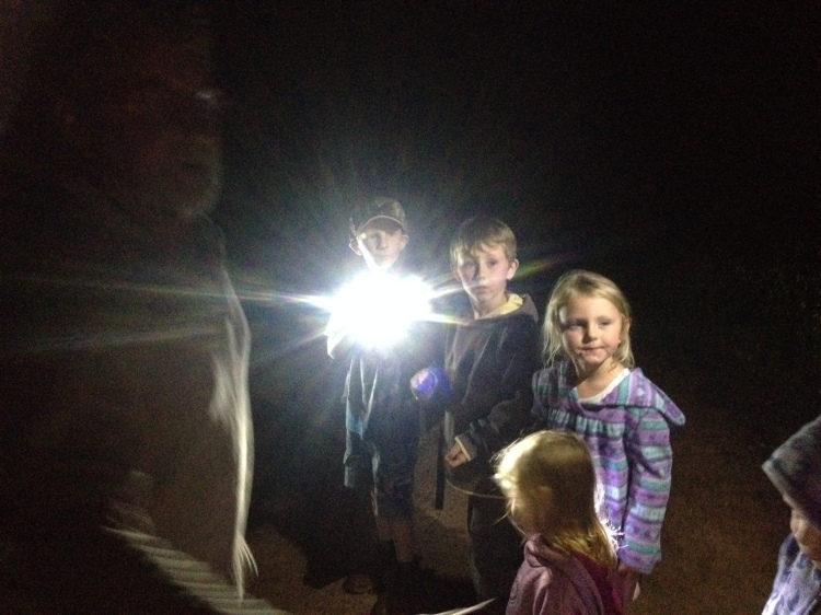 My Dad (Poppy) led a night bushwalk to give the kids a new experience, look at the stars, see and hear wildlife, and much more.