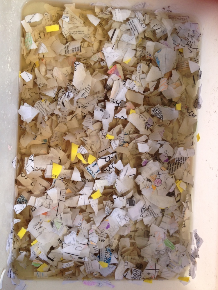 Shredded paper soaking in preparation for making paper.