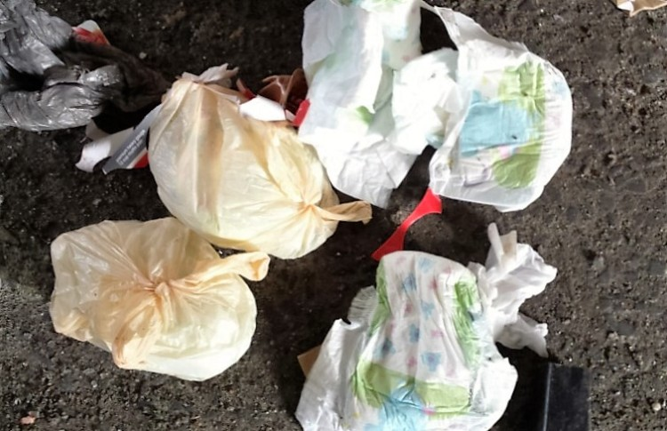Dirty nappies are not recyclable; they must go into your landfill bin. It's a no brainer. Image taken by Easaw Easaw, DASMA.