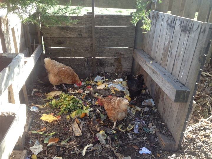 Extreme composting for zero wasters.