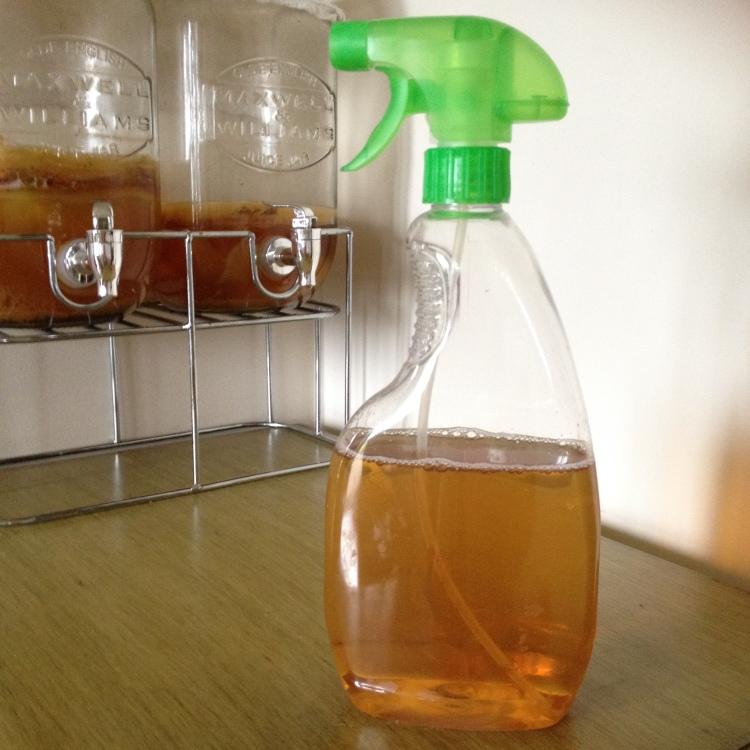 Kombucha vinegar in a reused spray bottle.
