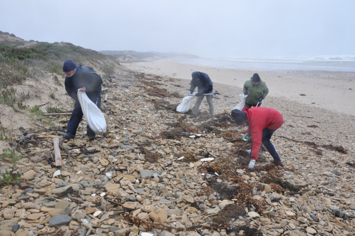 Volunteers collecting litter at Cotters Beach Wilsons Promontory.