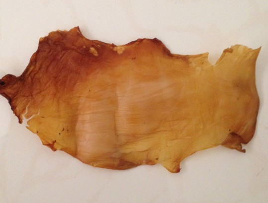 Dried kombucha SCOBY