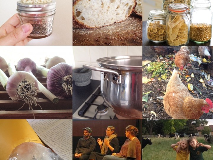 A year of simple sustainable living.