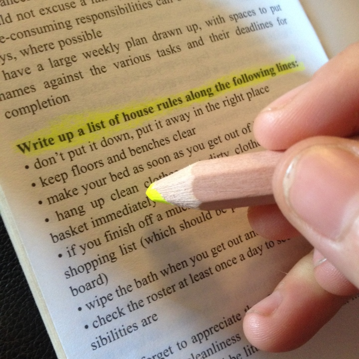 Fluro highlighter pencil