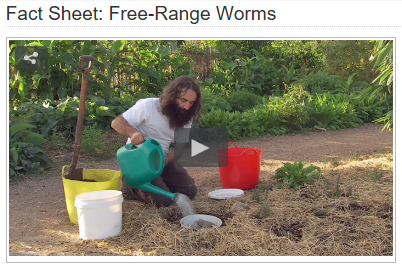 Screenshot Gardening Australia Fact Sheet: Free-Range Worms